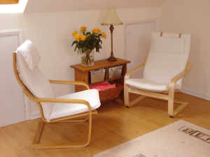 Journey therapy chairs in Gillian Lenane's surrey studio